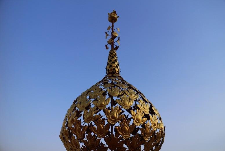 Gold Phan Bush