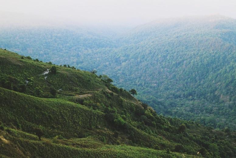 Morning Mist at  Mountain