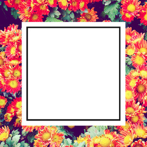 design frame label and flower