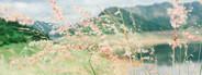 Khundanprakanchon Dam View  2