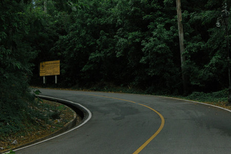 Asphalt road in rainforest