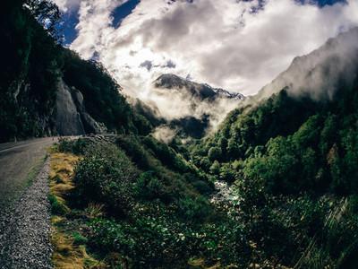 New Zealand Mist