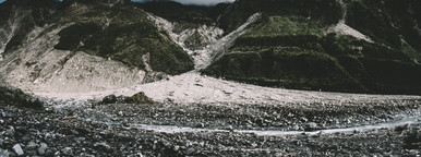 Fox Glacier  NZ