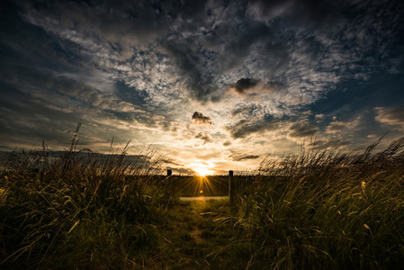 Path to sun