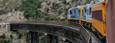 New Zealand Train Ride