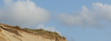 Dune One