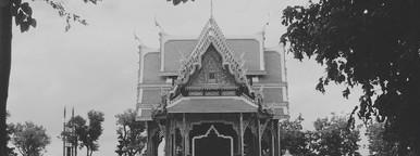 Siamese Architecture