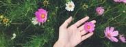 Woman s hand holding flower