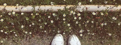 Standing on grass with daisys
