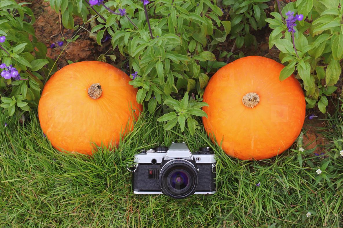 Vintage film camera with pumpkin