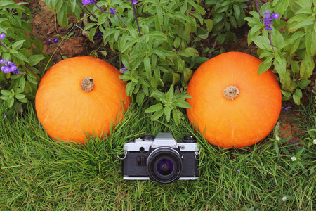 Vintage film camera with pumpkin