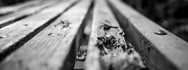 Old B W Bench