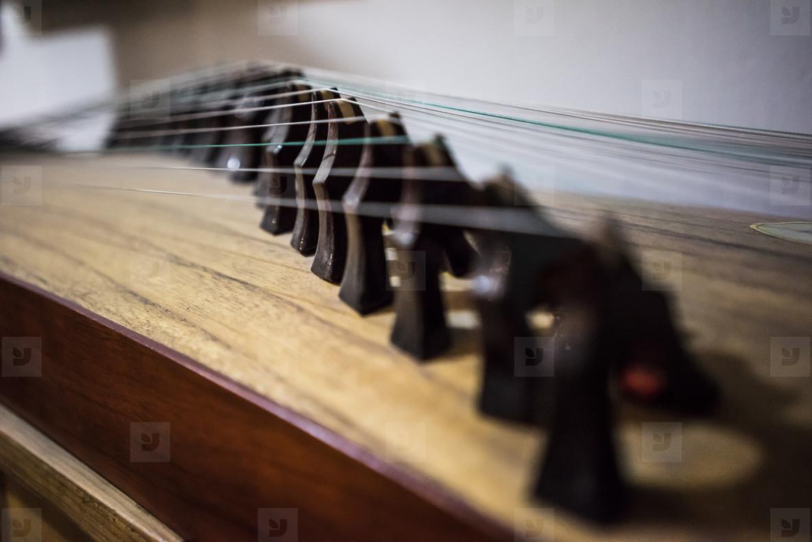 Strings and bridges Gu Zheng