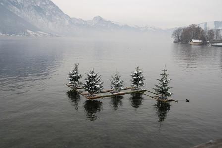 Swimming christmas trees