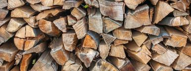 Wooden staple   tree