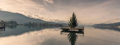 Swimming christmas tree