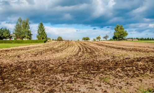 Nature  farming