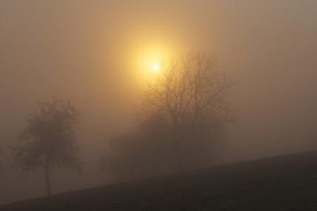 fog and sun 3