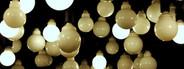 Light Bulbs  3