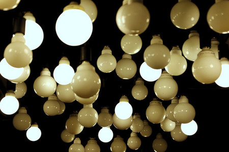 Light Bulbs  3