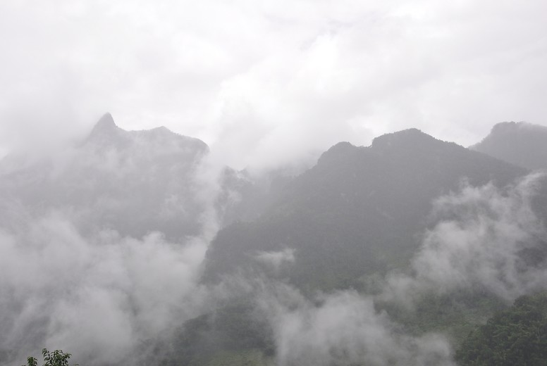 Down fog in the mountains
