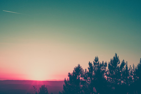 green and pink sunset