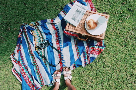 Picnic on summer day