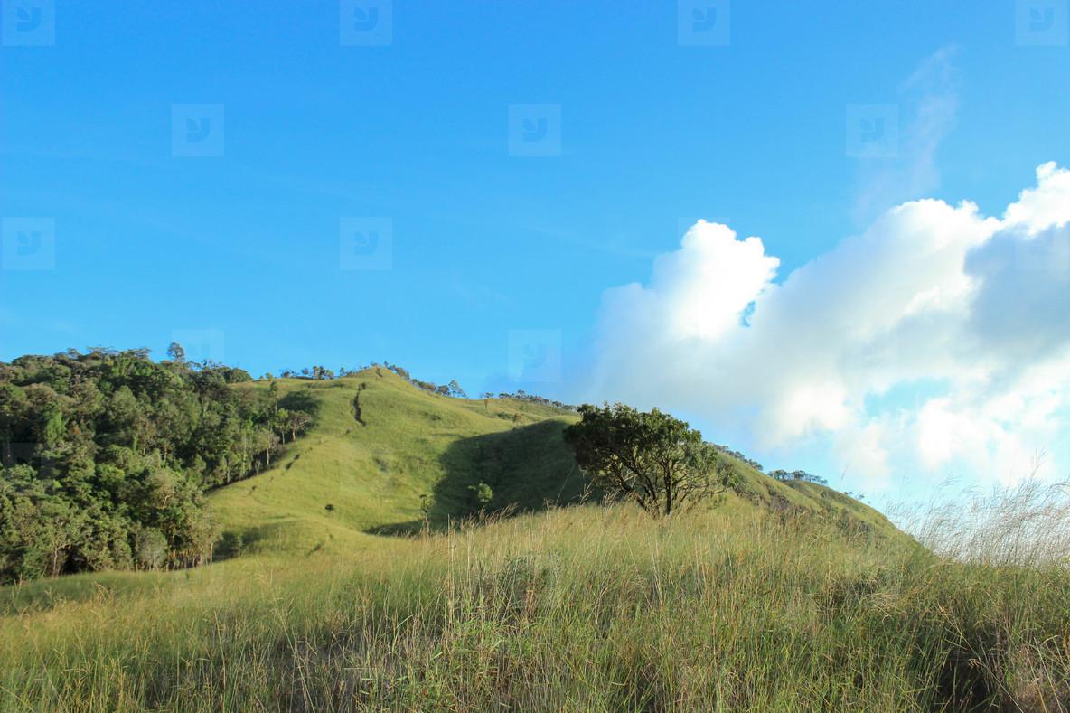 Mountain  Thailand