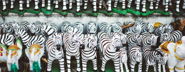 Thai Zebra Shrine 4