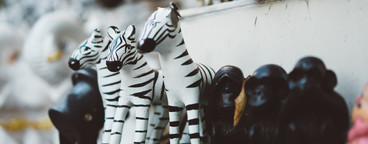 Thai Zebra Shrine 2