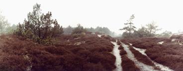 Nature Experiences  02