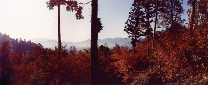 Nature Experiences  06