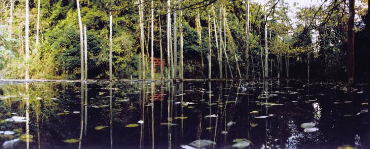 Nature Experiences 27