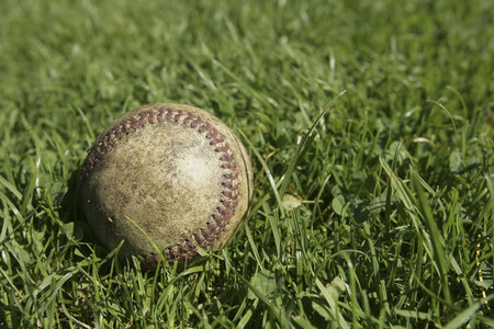 Baseball Team 01