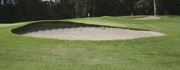Golf is Good  05
