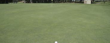 Golf is Good  07