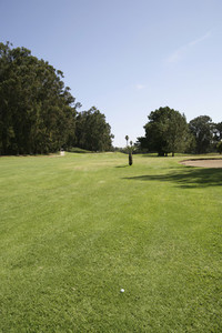 Golf is Good  11
