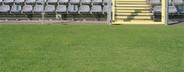 Stadium  04