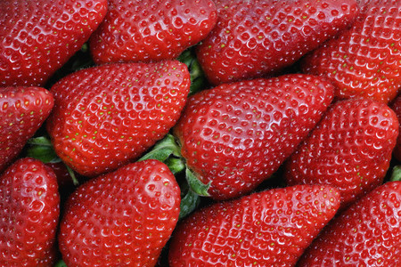 Food Textures 17