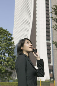 Japan Digital 05