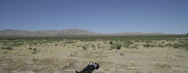Desert Business Fiction  15
