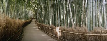 Travelling Japan  07