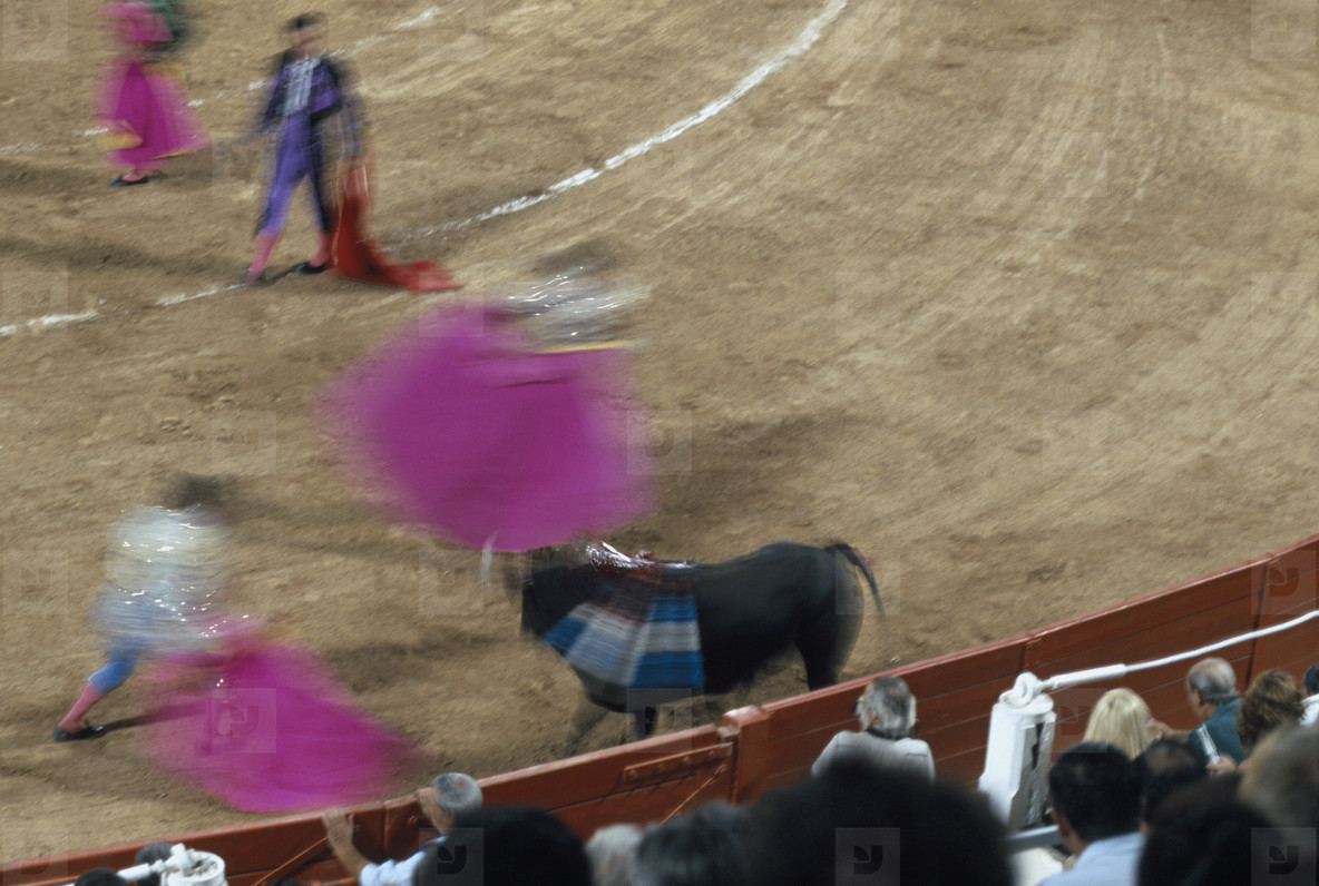 Bullfights and a Fire  05