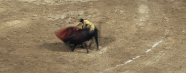 Bullfights and a Fire  06