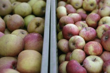 Organic Market 09