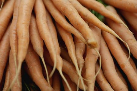 Organic Market 21