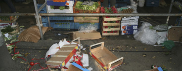 Organic Market  22