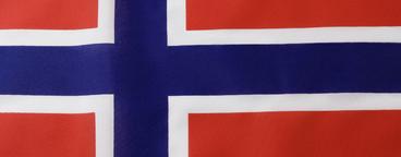 Flags Pt 1  40