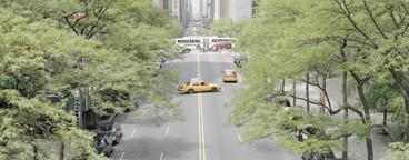 NYC Plus  05