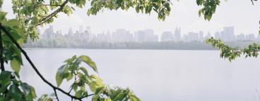 NYC Plus  08